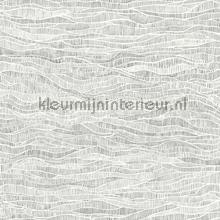 Meadow papel pintado Cole and Son Botanical 115-13039