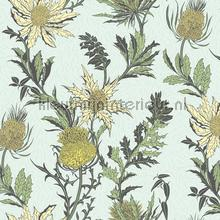 Thistle papel pintado Cole and Son Botanical 115-14042