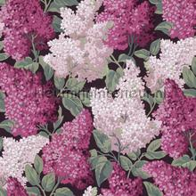 Lilac Grandiflora papel pintado Cole and Son Botanical 115-15045