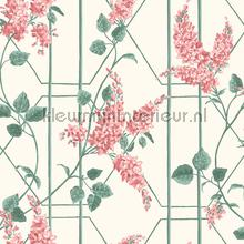 Wisteria papel pintado Cole and Son Botanical 115-5012