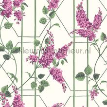 Wisteria papel pintado Cole and Son Botanical 115-5013