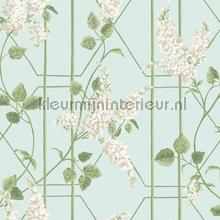 Wisteria papel pintado Cole and Son Botanical 115-5014