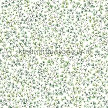 Maidenhair papel pintado Cole and Son Botanical 115-6018