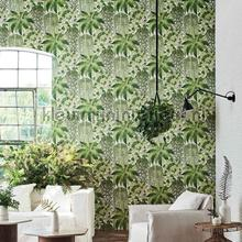 Fern papel pintado Cole and Son Botanical 115-7021