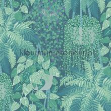 Fern papel pintado Cole and Son Botanical 115-7022