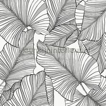 laurus tapet Hookedonwalls Botanical 19711