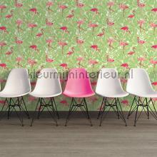 Flamingos in het groen carta da parati AS Creation nuove collezioni