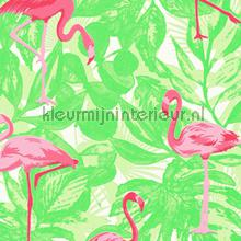 Flamingos in het groen papel de parede AS Creation Wallpaper creations