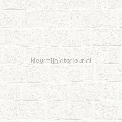 witte stenen met relief papier peint 35981-1 filles AS Creation