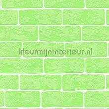 Groene bakstenen met relief papel de parede AS Creation Wallpaper creations