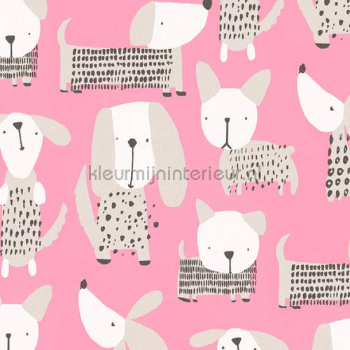 Allemaal hondjes papier peint 36755-2 filles AS Creation