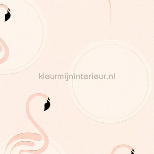 Pure flamingo tapet 36998-3 piger AS Creation