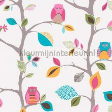 Uilen in takkenbomen papier peint AS Creation Wallpaper creations