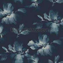 Midnight blooms behaang York Wallcoverings van vruuger