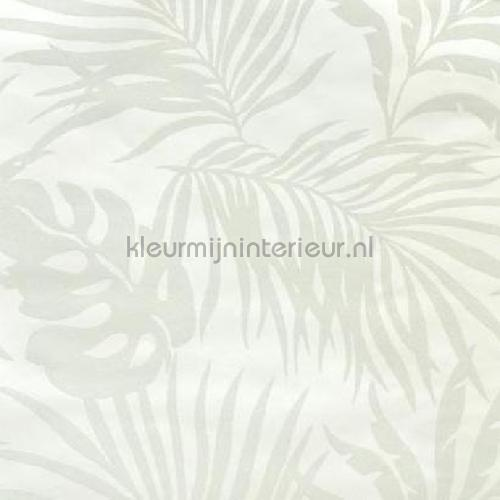 paradise palm tapet so2491 romantisk moderne York Wallcoverings