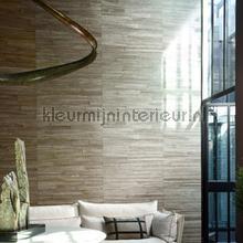 Camago tapeten Arte Carabao 14009