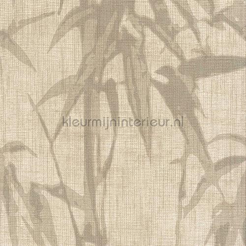 Crivelli bamboo wallcovering ca8251-070 Casa Carlucci Carlucci di Chivasso