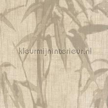 Crivelli bamboo papier peint Carlucci di Chivasso Casa Carlucci ca8251-070
