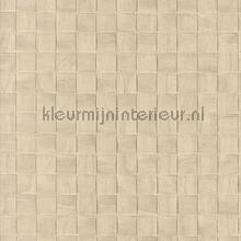 67514 papier peint Carlucci di Chivasso Casa Carlucci ca8254-070