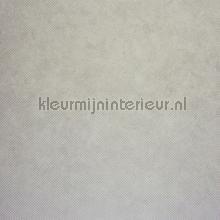 CHROME UNI LEATHER BEIGE tapet Casadeco Chrome CHR28371123