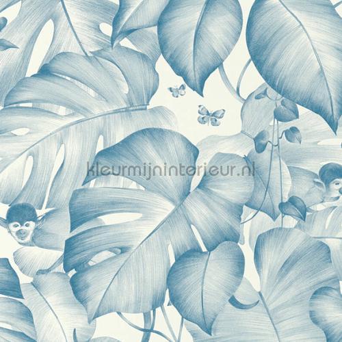 Blue monkeys tapeten 36625-1 Colibri AS Creation