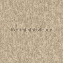 67201 wallcovering York Wallcoverings Color Library 2 cl1882