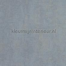 metal tapet BN Wallcoverings Color Stories 48455