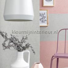 coral tapet BN Wallcoverings Color Stories 48461
