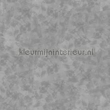 Concrete Cire fotobehang Noordwand alle afbeeldingen