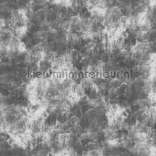Concrete Cire papel pintado Noordwand Concrete Cire 330716