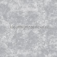 Concrete Cire papel pintado Noordwand Concrete Cire 330808