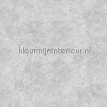 Concrete Cire papel pintado Noordwand Concrete Cire 330846