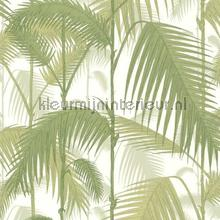 Palm Jungle tapet Cole and Son Contemporary Restyled 95-1001
