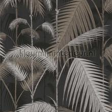 Palm Jungle tapet Cole and Son Contemporary Restyled 95-1004