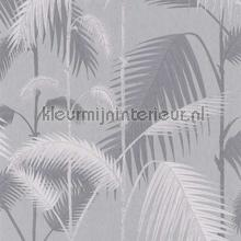 Palm Jungle tapet Cole and Son Contemporary Restyled 95-1007