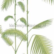 Palm leaves tapet Cole and Son Contemporary Restyled 95-1009