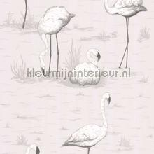 Flamingos wallcovering Cole and Son girls