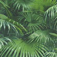 Groene planten behang Rasch behang