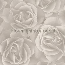Lichte rozen behang Rasch Crispy Paper 525601