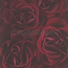 Rode rozen behang Rasch Crispy Paper 525625