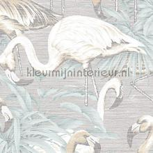 Flamingo behang Arte Curiosa 31542