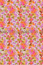 Bloemen - roze/oranje fotobehang Curious Collections Curious Collections CC MLE 10093