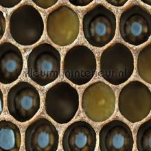 Bijenkorf fotomurales CC_MLE_10210 Curious Collections
