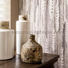 BN Wallcoverings Curious behang collectie