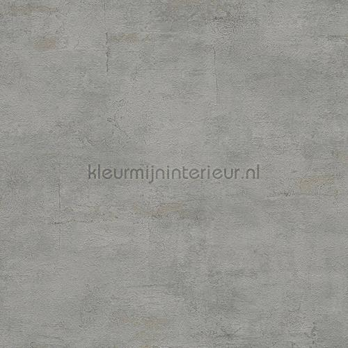 Stucsel grijs tapeten 306683 Daniel Hechter 5 AS Creation