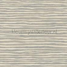 Terra Nova wallcovering York Wallcoverings Dazzling Dimensions y6201102