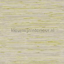Lustrous Grasscloth wallcovering York Wallcoverings Dazzling Dimensions y6201605