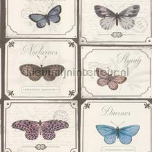 Bordjes met vlinders wallcovering Rasch Vintage- Old wallpaper