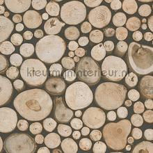 Openhaard hout tapeten AS Creation Dekora Natur 6 95836-1