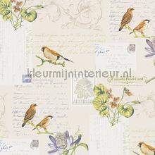 Brieven & vogels tapeten Dekora Natur 6